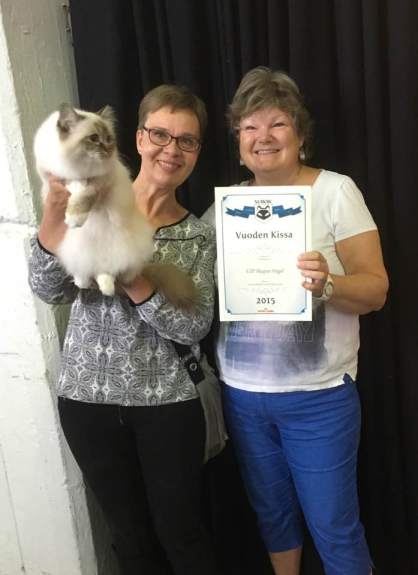 Angel Best Neuter in Surok 2015