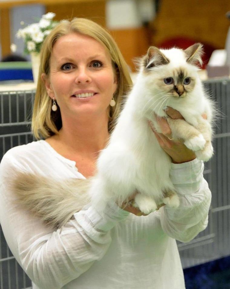 Shapur Chanel- Audience`s best cat, 22.05. Foto: Odd Lundberg